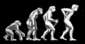 Vier hintereinander gehende Wesen, die sich vom krabbelnden Affen zum stehenden Menschen entwickeln